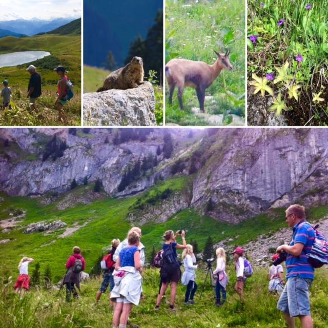 Activités Bien être Go sport Montagne Praz de Lys (5)